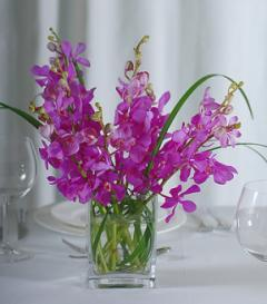 photo of Purple Orchid Centerpiece