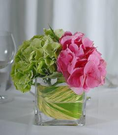 photo of Green & Pink Hydrangea Centerpiece
