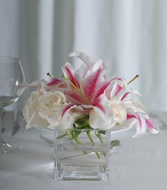 photo of Stargazer Lily & White Rose Centerpiece