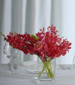 Red Orchid Centerpiece