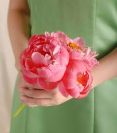 Pink Peony Bridesmaid Bouquet