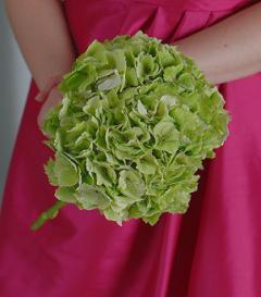 photo of Green Hydrangea Bridesmaid Bouquet