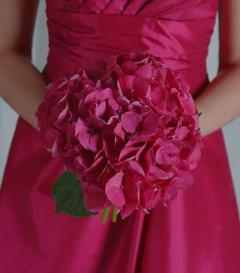 Hot Pink Hydrangea Bridesmaid Bouquet