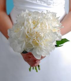 photo of White Peony Bridal Bouquet