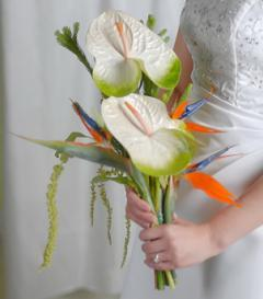 photo of Anthurium & Birds of Paradise Bridal Bouquet