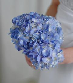 photo of Blue Hydrangea Bridal Bouquet