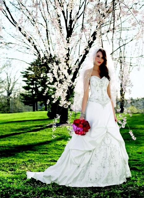 Alfred-angelo-wedding-dresses.full
