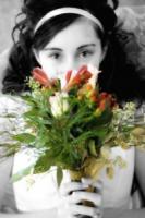 Csflowers.full