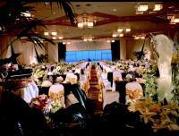 1066898-23713677-ballroom.full