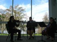 photo of Classern Quartet