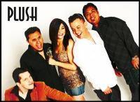 photo of Plush