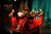 photo of Dolce Vita Strings