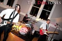 photo of The Dogtones