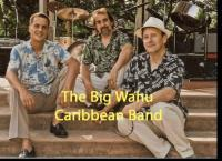 photo of Big Wahu Caribbean Band