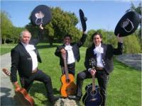 photo of Mariachi Trio Estrellas de Oro