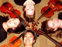 photo of Harmony Strings - Professional String Quartet