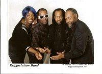 photo of Reggaelution Band