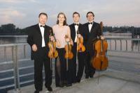 photo of Harmonia Strings