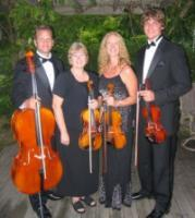 photo of Go 4 Baroque String Quartet & Ensembles