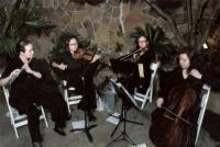 photo of Serenata Strings