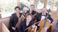 photo of The Jasmine String Quartet