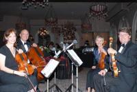 photo of Camellia String Quartet