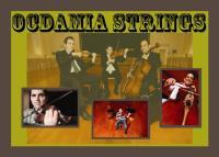 photo of Ocdamia Strings