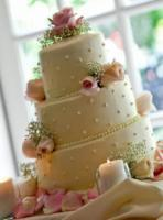 Wcaa-mazzottas-italian-bakery-wedding-cake.full