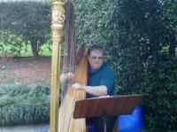 photo of Sara's Songs & Strings