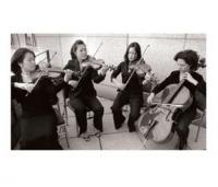 photo of Synchronicity String Quartet