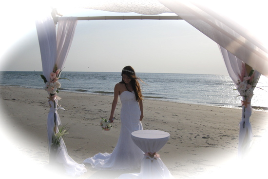 photo of Sweetwater Bamboo Beach Wedding Events