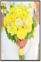 yellow_ranunculus_bouquet.jpg