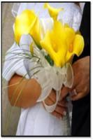Yellow_mcl_bouquet.jpg