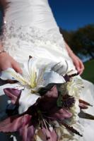 photo of White Willow Studio - Elite Wedding Photography, Videography and DJ Entertainment