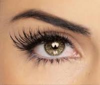 Eyelash.full