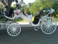 AngelaWeddingCarriage.JPG
