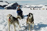 Dogsled_close.full