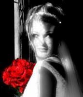 Bridal%20390.full