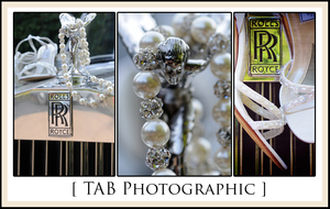 photo of - TAB Photographic ~ An Artistic Endeavor of Your Day