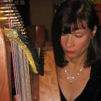 photo of Karen Meyer Celtic Harp