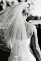 Bridal_veil2.full