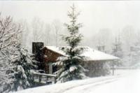 photo of Fire Mountain Inn Cabins
