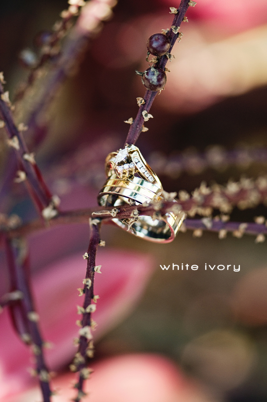 photo of White Ivory Photography