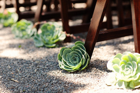 rustic elegance real wedding outdoor ceremony eco friendly succulents