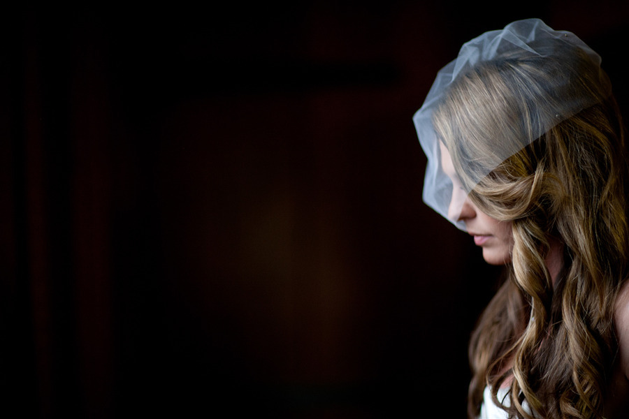 All-down-wedding-hair-loose-waves-with-birdcage-bridal-veil.full