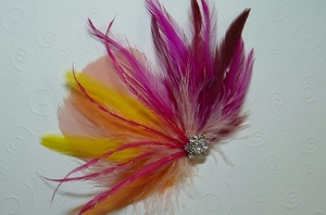 photo of Feather bridal fascinator
