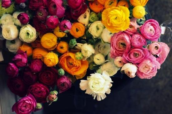 bright wedding flowers for spring rananculus