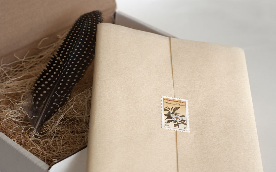 Unforgettable-wedding-invitations-feather-enclosed-stationery-box.full