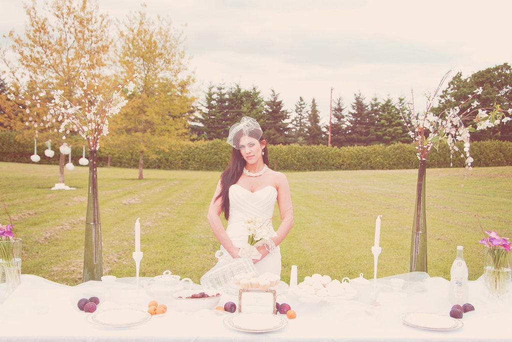 Dot-print-bridal-birdcage-veil.full