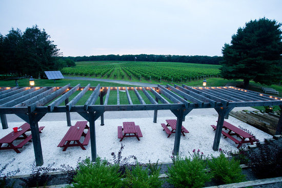 romantic winery wedding outdoor wedding venues winery venue